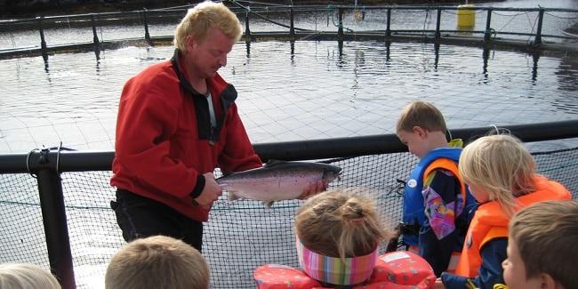 הסברים על דגי הסלמון בחווה Norsk Havbrukssenter