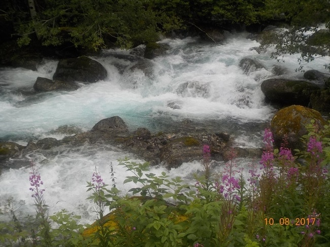צמחייה ופרחים וכמובן מים צלולים צלולים