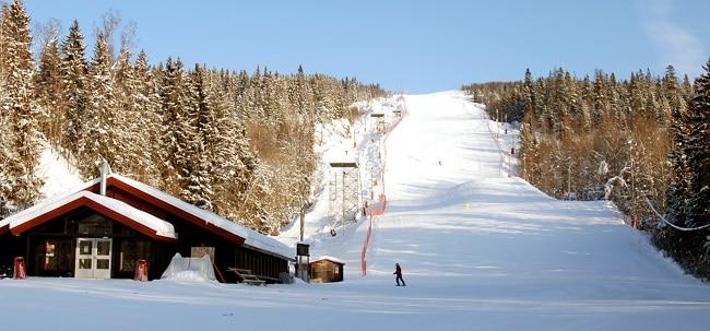 פארק החורף של אוסלו - Oslo Vinterpark