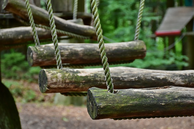 טיפוס מעץ לעץ - פארק הטיפוס