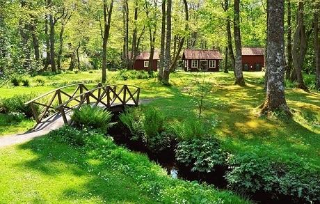 טיול מאורגן לסקנדינביה שבדיה נורבגיה ודנמרק - נוף כפרי בשבדיה - עותק