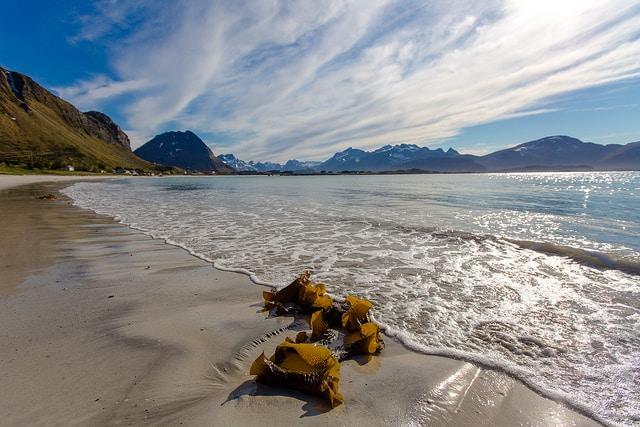 חוף kvalvika beach