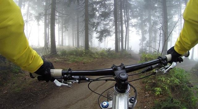 טיול אופניים ביער נורבגי
